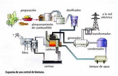 Cogeneracion electrica